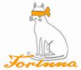 Fortuna Roma Logo